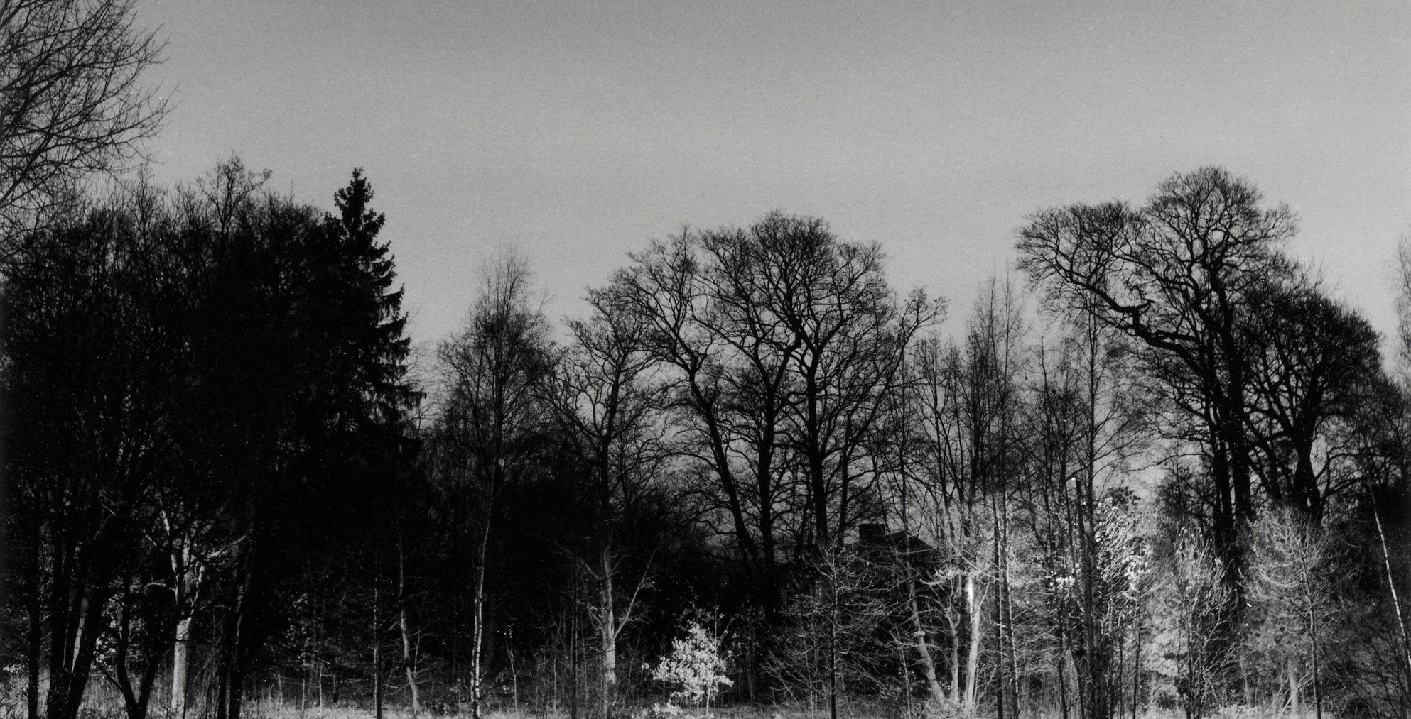 Yksityiskohta valokuvataiteilija Martti Jämsän teoksesta.